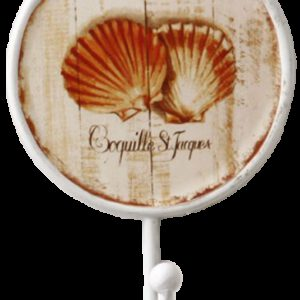 Coquilles Saint Jacques Scallop Shell Decorative 170mm Coat Hook
