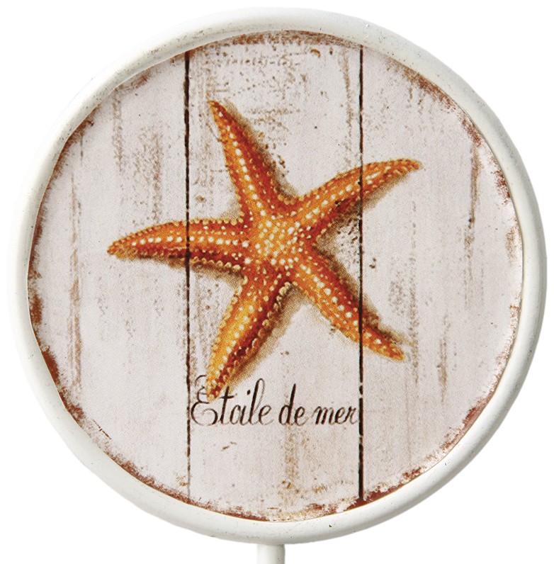 895 Etoile De Mer Starfish Decorative 170mm Coat Hook