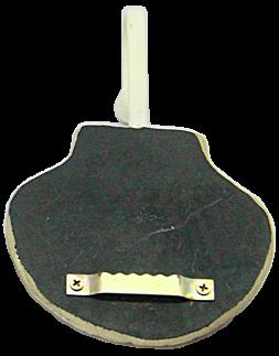 1085 Venera Sea Shell Shape Relax Decorative Coat Hooks