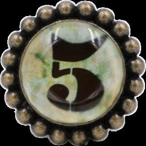 4948 Ashenvale Varema Vintage Patina Number Series Five Antique Brass 42mm Round Glass Knob
