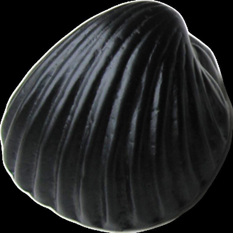 5304 Coquille Antique Shell Matte Black 49mm Cup Pull Knob